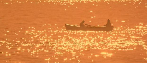 Golden Sea Waking Ned Devine