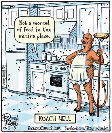 Bizarro Roach Hell