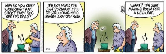 Pickles Dead Plant 2