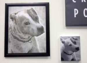 Dog Cremation Portrait