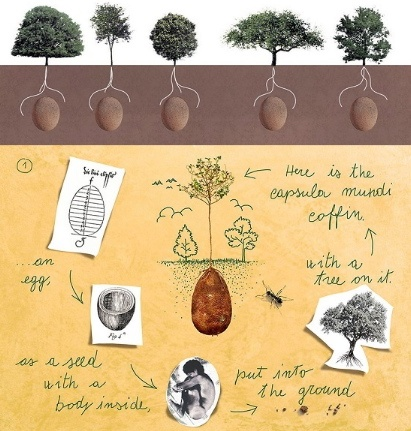 Casket Pods for Green Burial from Capsula Mundi | A Good