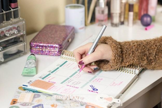 2019 Goal Planning with Erin Condren LifePlanner