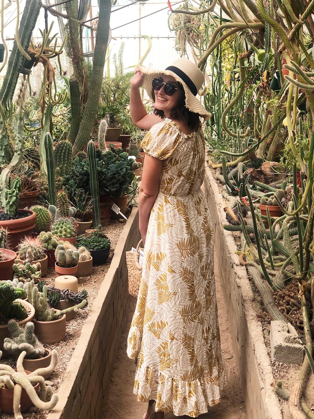 Moorten Botanical Garden in Palm Springs | A Good Hue