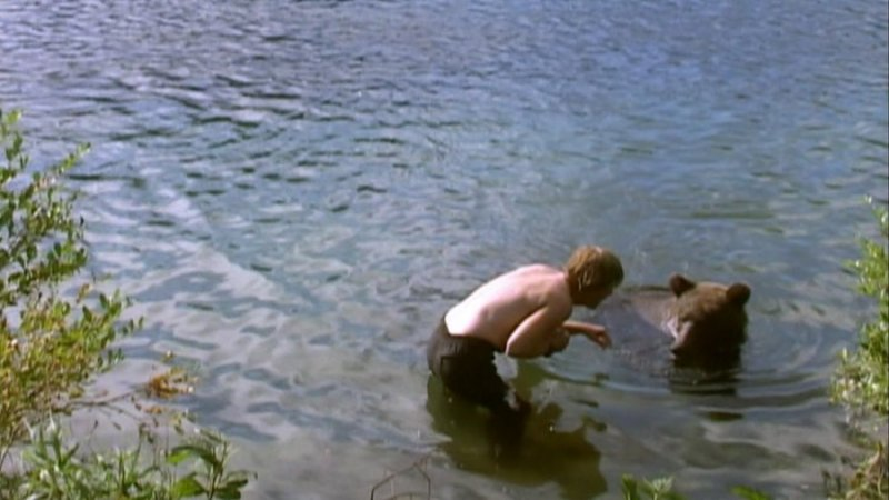 Shot from the movie Grizzly Man (2005)