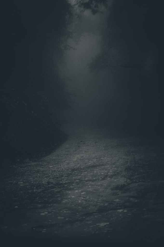 mysterious spooky lane in dark forest