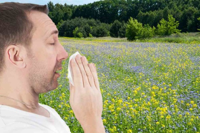Allergie3 starnuto uomo