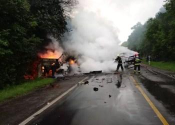 Foto: Polícia Civil / Divulgação