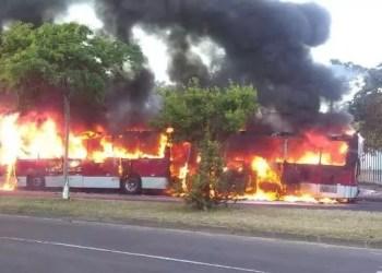 Coletivo ficou completamente destruído pelas chamas. Foto: reprodução/Record TV RS