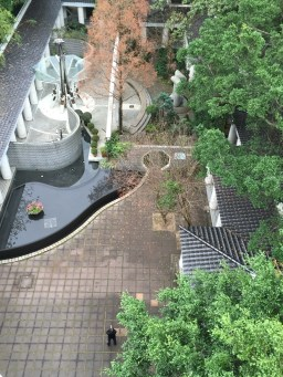 Looking down at the Zen Garden in Hong Kong Park from the tower