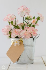 White and Pink Carnations in a Silver Bucket with a Gift Tag on a White Wooden Table