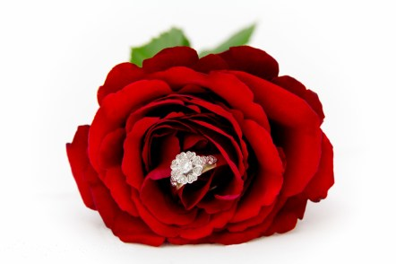 Gold and Diamond Ring set into a Rose