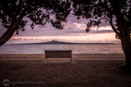 Mission Bay Auckland - AG Creations Photography