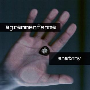 anatomy [2012]