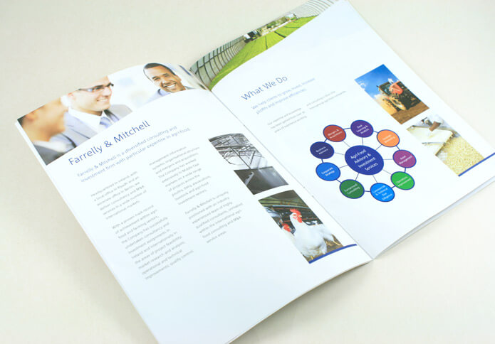 Brochure for Farrelly & Mitchell.