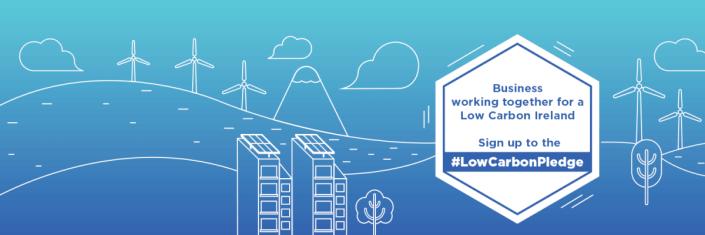 #LowCarbonPledge social media posts for BITC.ie