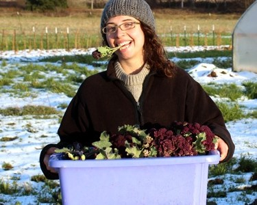 Farm Profile: Greenbank Farm