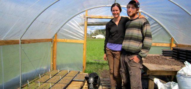 Farm Profile: Turnip the Beet Farm