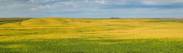 More US Farmland Owned by Overseas interests