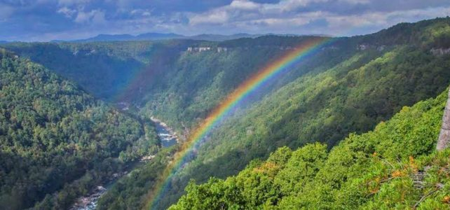 Woodland Community Land Trust: An Antidote to Extraction in Rural Appalachia