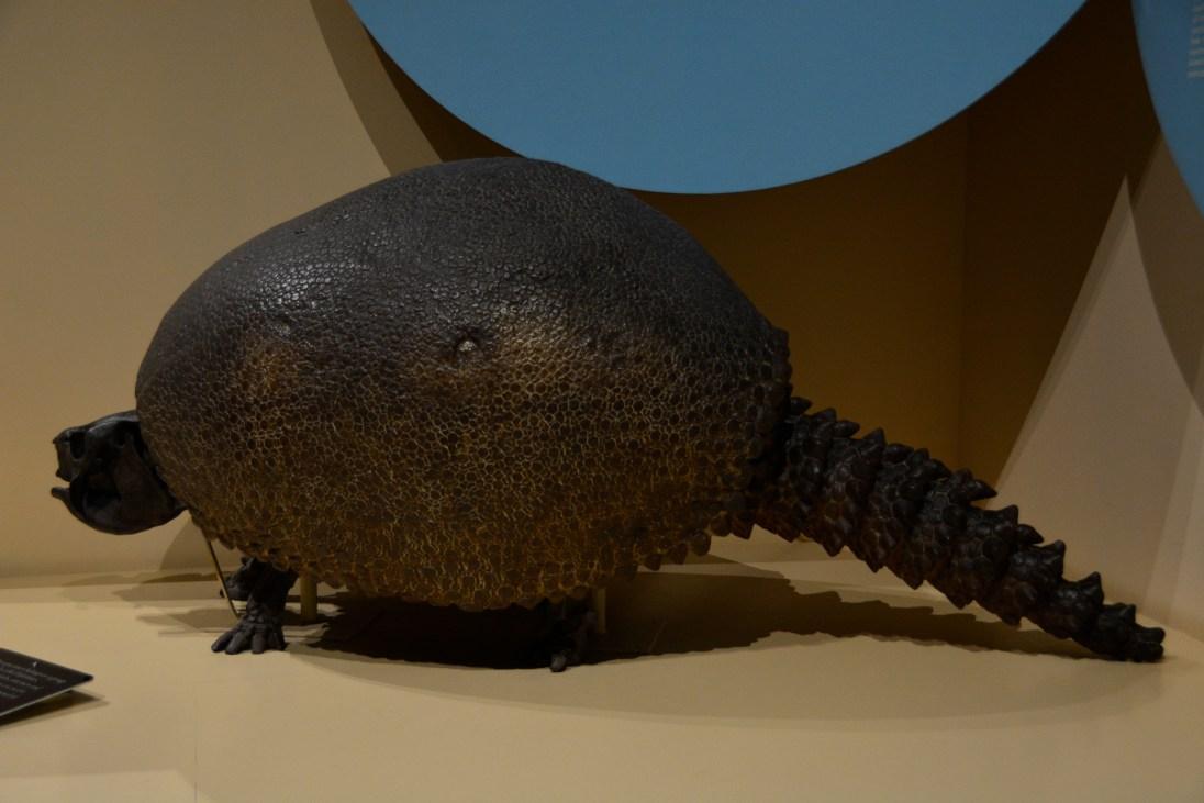 Prehistoric Creature in Winnipeg, MB