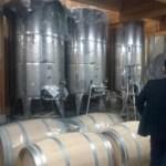 ワイナリー醸造を支援する!