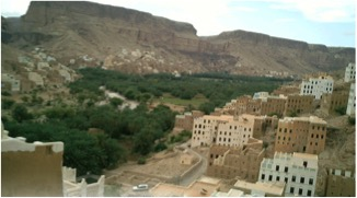 palm-view-in-hadramout