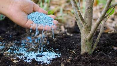 مركبات كيميائية تستعمل لتخصيب التربة