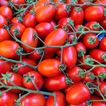 Pomodori Piccadilly Tabasso