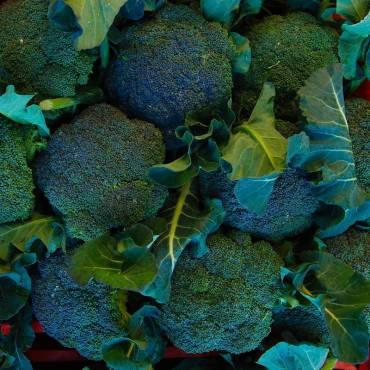 Broccolo Tabasso