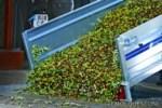Guía para el transporte de aceituna, campaña 2012-2013