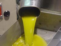 aceite de oliva en origen