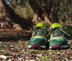 zapatillas asics diseño aceituna
