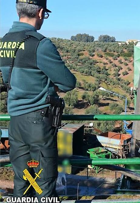 Guardia Civil observando el olivar