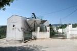 Subvención a cooperativas de aceite de oliva