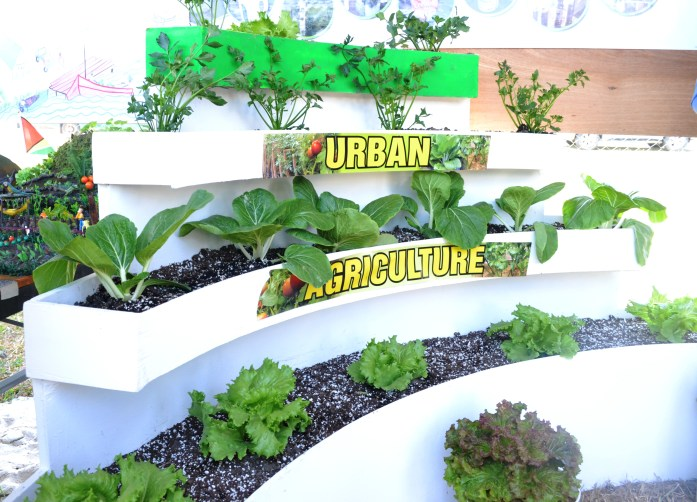 A sample of Urban Agriculture