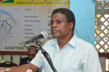 CEO acting of the National Drainage and Irrigation Authority, Frederick Flatts