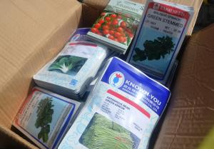 Some of the seeds that were donated