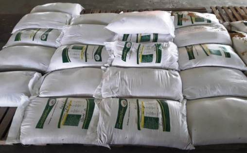 GRDB seed paddy in properly labelled bags
