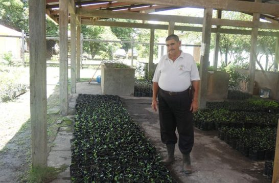 NAREI Farm Manager Joseph Gonsalves