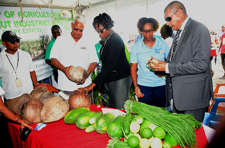 Hon. Minister of Agriculture, Noel Holder (left); Public Service Minister, Tabitha Sarabo-Halley (second from left); Resident FAO Representative, Dr. Gillian Smith and Minister of Business, Haimraj Rajkumar checking out some of the exhibits at the World Food Day exhibition (Guyana Chronicle photo)