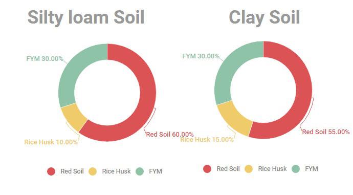 gebera cultivation soil