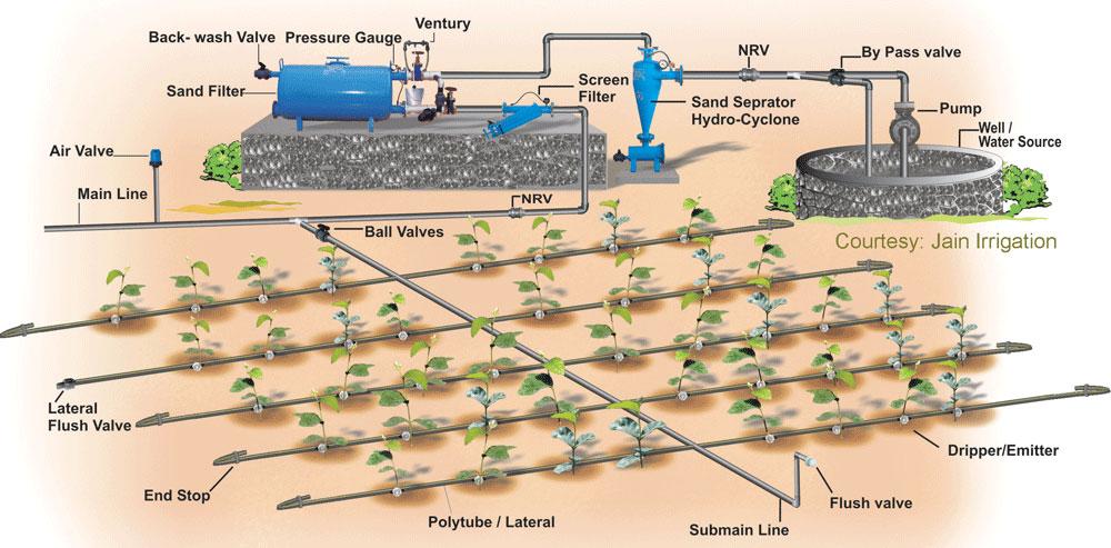 drip irrigation system design