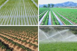 Methods of Irrigation