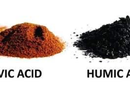 الفرق بين حمض الهيوميك وحمض الفولفيك
