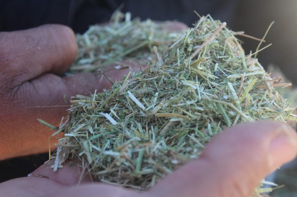Soğuk havalar saman satışlarını düşürdü