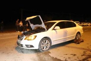 Ağrı'da otomobil sürüye çarptı, 6 keçi telef oldu
