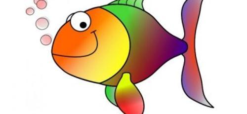 Is Fishing Harming the Marine Ecosystem?