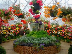 ballarat-botanical-gardens