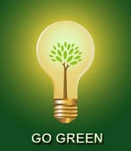 gogreenlightbulb-261x300