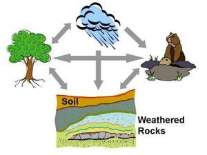 soil_forming_factors (Copy)